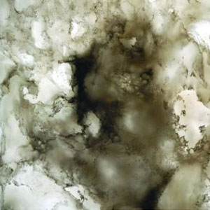 Okite Quartz Surfaces - Bianco White 9004